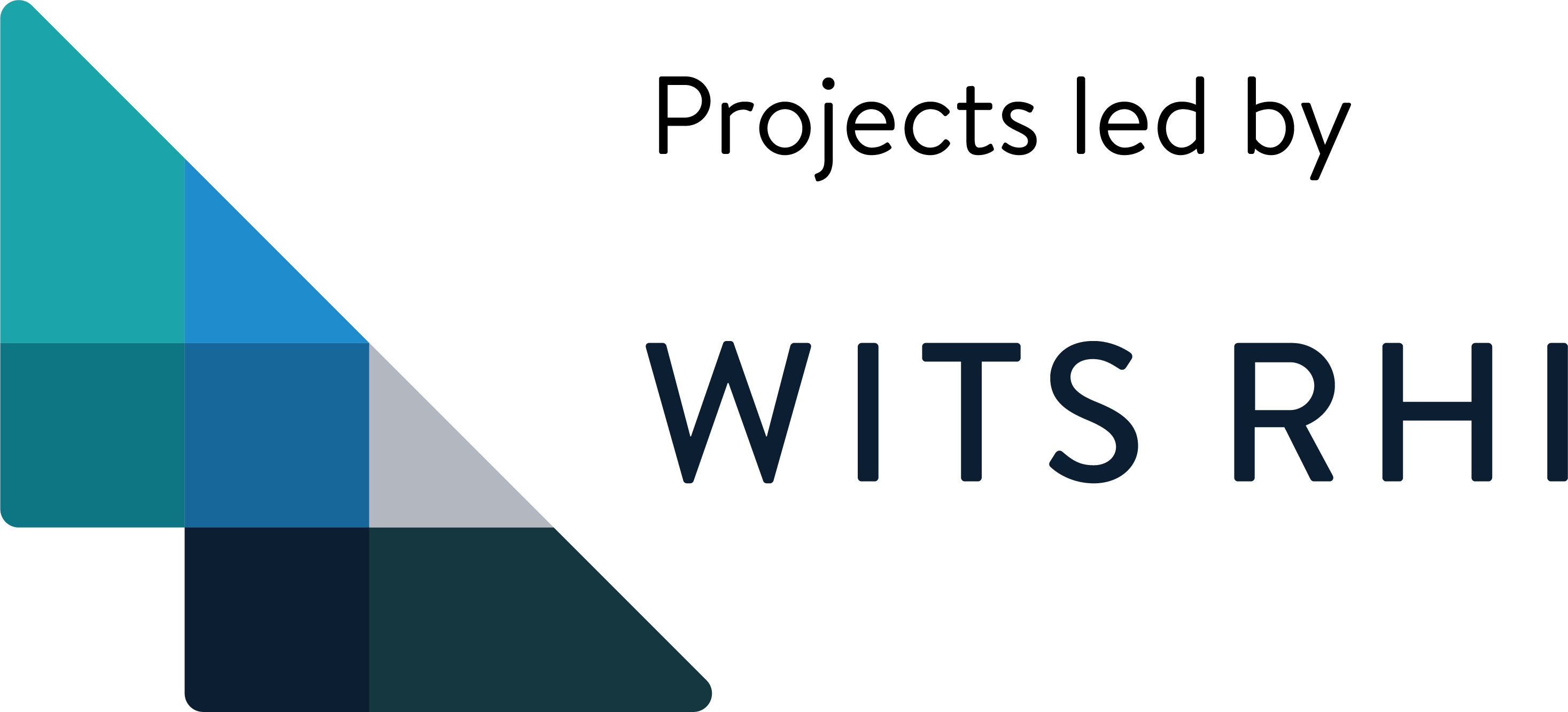 Wits RHI Logo_Projects led by